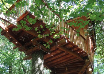 extérieur cabanes arbres charente