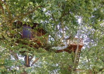 cabanes arbres charentes